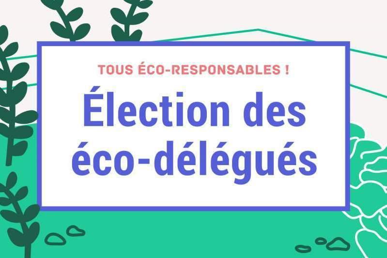 Election des éco-délégués